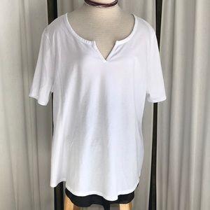 Plus Size White V T-Shirt